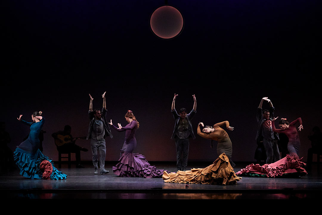 Photographs of ballet flamenco, photographs of show, Toti Ferrer Fotògraf, Girona